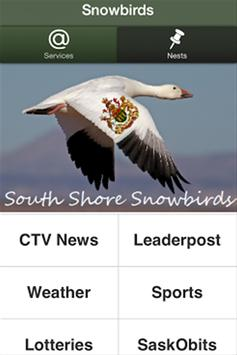 Snowbirds screenshot 4