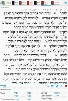 Bible Lexicon: Bible Study poster