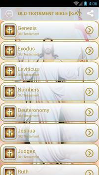 World English Bible apk screenshot