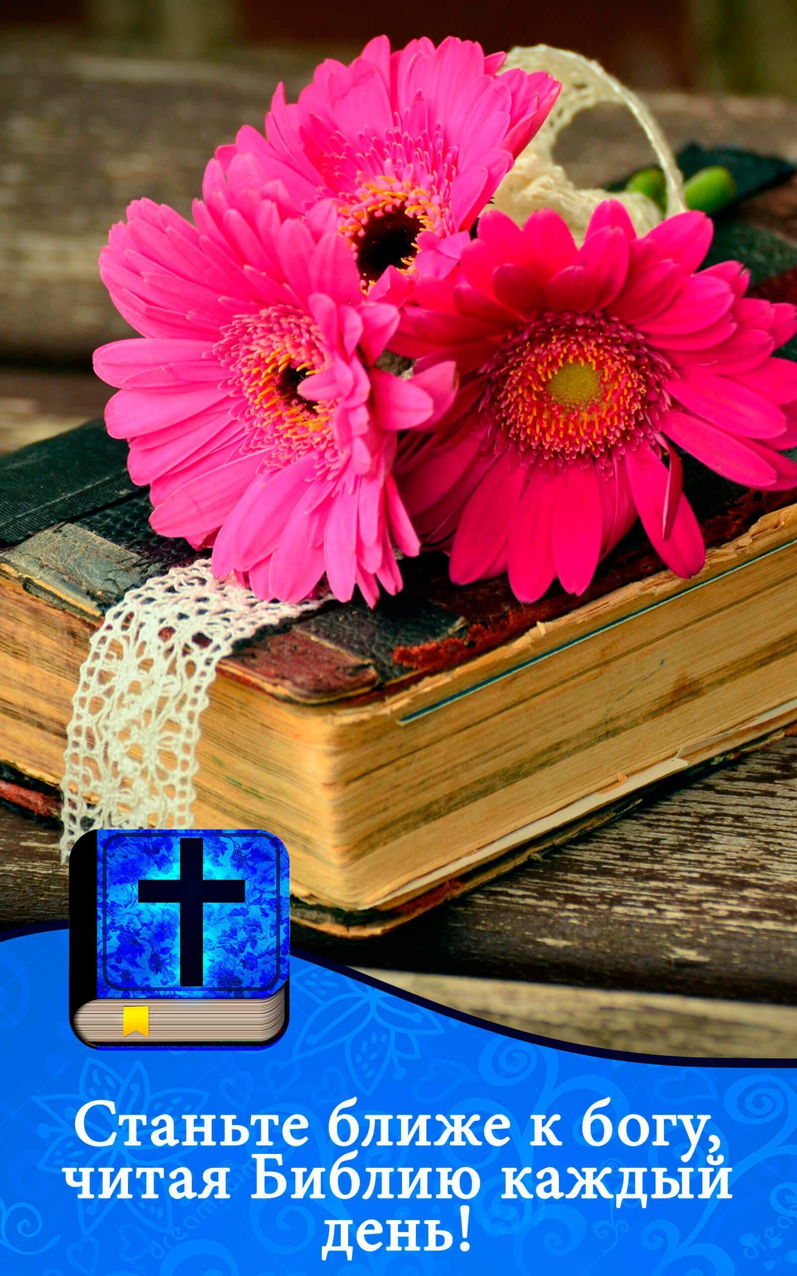 библия перевод нового мира скачать fb2