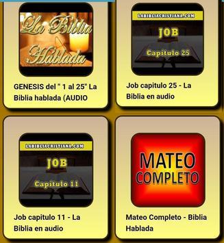 Latin American Bible screenshot 5