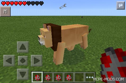 minecrafe how to get a cat