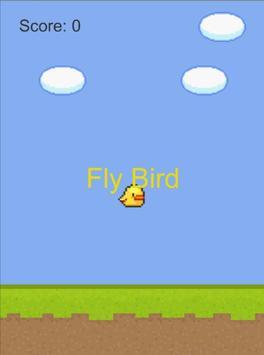 FlyBird poster