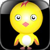 Bird Training icon