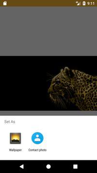 Black and Gold HD FREE Wallpaper screenshot 1