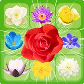 Blossom Jam: Amazing Match 3 icon