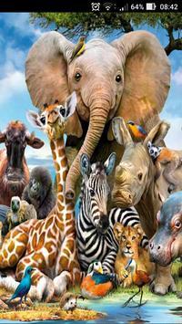 Sons dos Animais poster