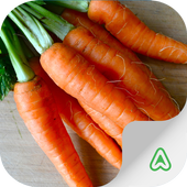Carrot Pest icon