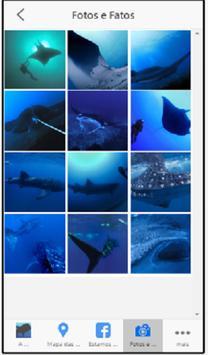 Marine Megafauna apk screenshot