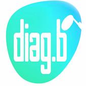 Diag.B icon