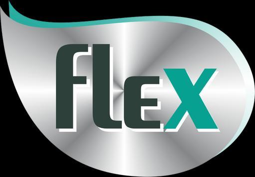 Flex Frota poster