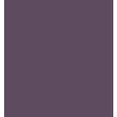 DealerBR icon