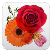Catálogo de Flores icon