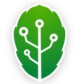 DataMatte icon