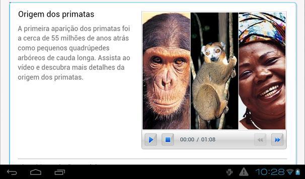 Evolução humana poster