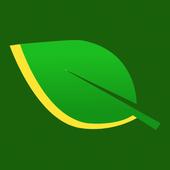 Verde Transportes icon