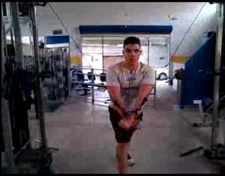 Treino Musculação screenshot 10