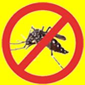 Smash Dengue icon