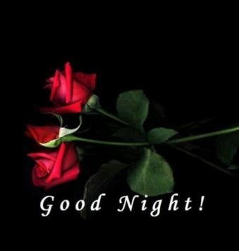 Good Night Pictures poster