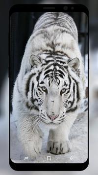 White Tiger Wallpaper screenshot 4