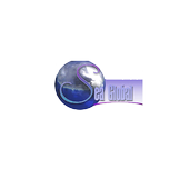 Sea Global icon
