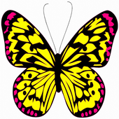 Butterflies Matching Game icon