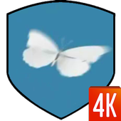 Butterfly Video Wallpaper icon