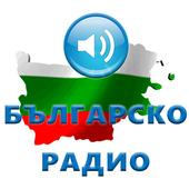 Топ 30 български радиа онлайн icon