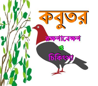 কবুতর (রক্ষণাবেক্ষণ ও চিকিৎসা) poster