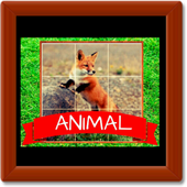 Animal Puzzle King icon