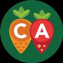 CA Meals for Kids APK