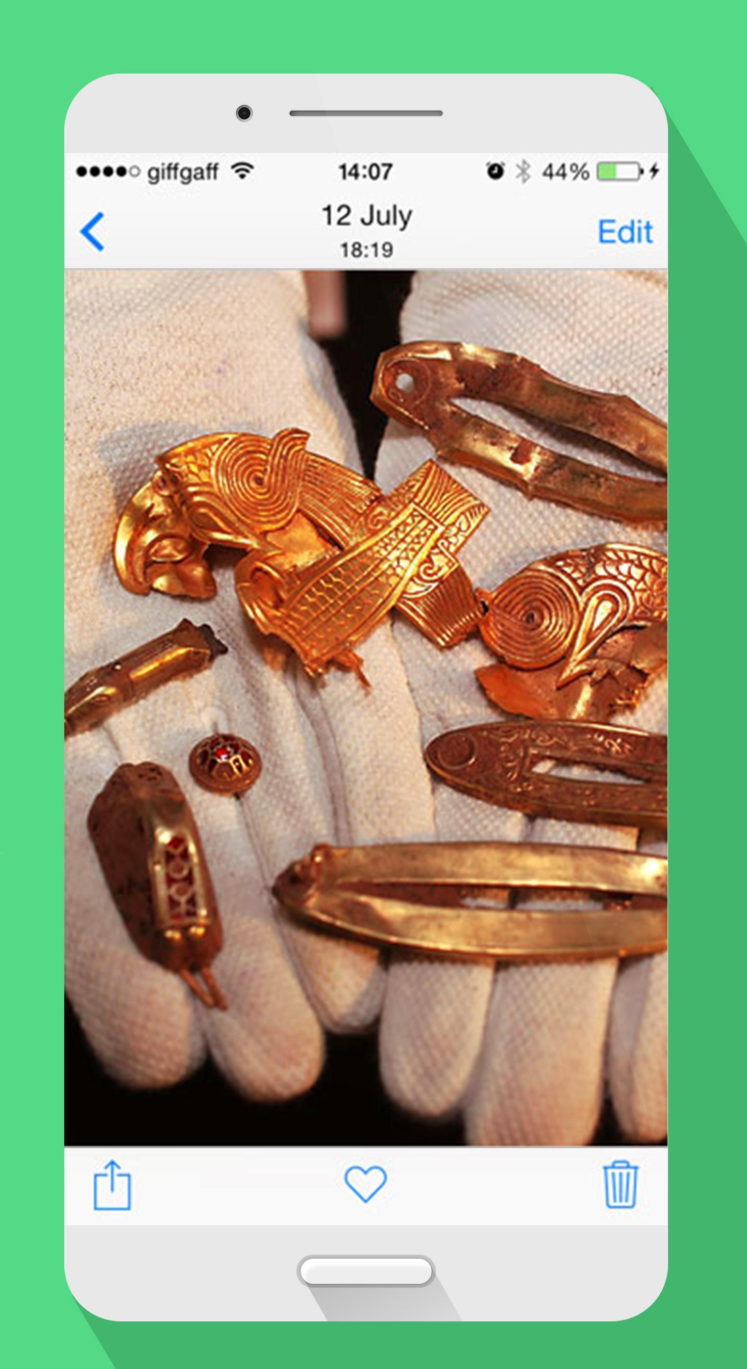Gold and treasure detector
