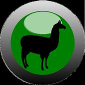 Card game - CochaBamba icon