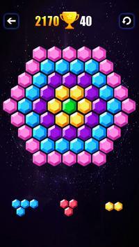 Block Hexa screenshot 2