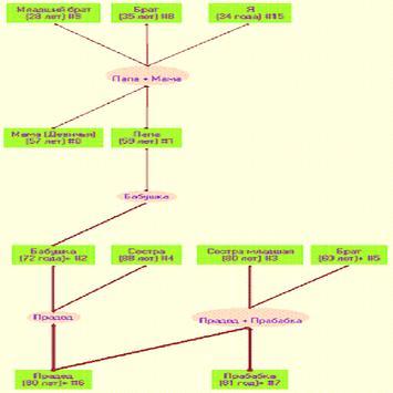 Genealogic tree poster