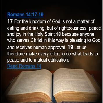 Youth Bible - Good News screenshot 3