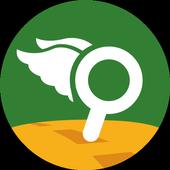 Geovysor icon