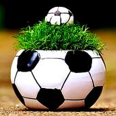 Calciopost icon