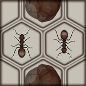 Block The Ants icon