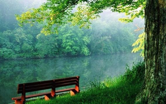 ... Green Nature HD Wallpaper apk screenshot ...
