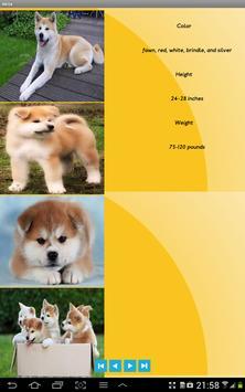 DogsBio apk screenshot