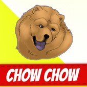 Chow Chow Dogs icon