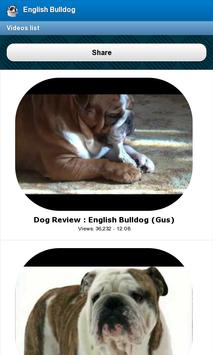 English Bulldog screenshot 3