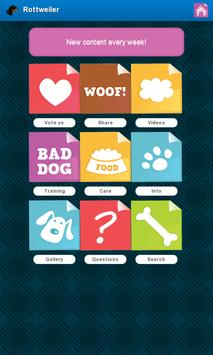 Rottweiler Dogs poster