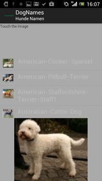 DogNames screenshot 2