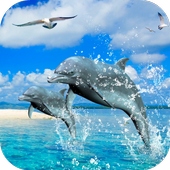 Dolphins 3D Video Wallpaper icon