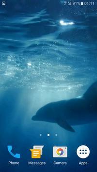 Dolphins 3D Video Wallpaper apk screenshot