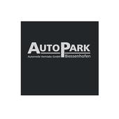 AutoPark icon