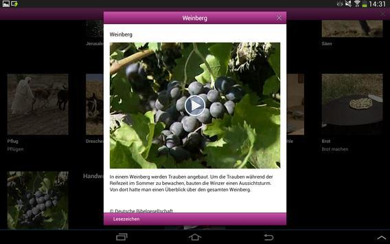 BasisBibel Lite apk screenshot