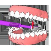 DentalCluj Brush Assistant icon